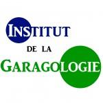 Logo IDLG 5